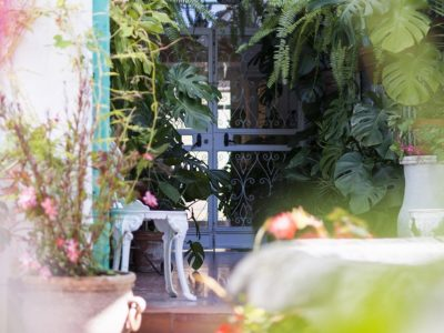 Jardin 10 - hostal mena - nerja