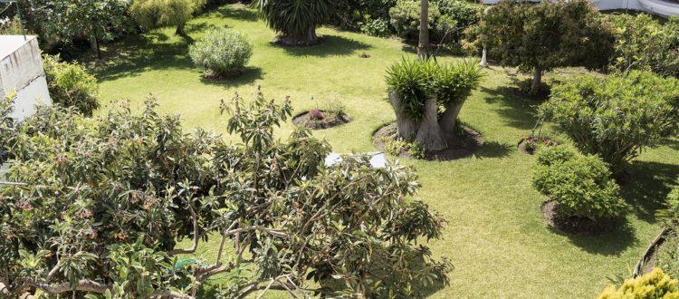 Jardin - hostal mena - nerja